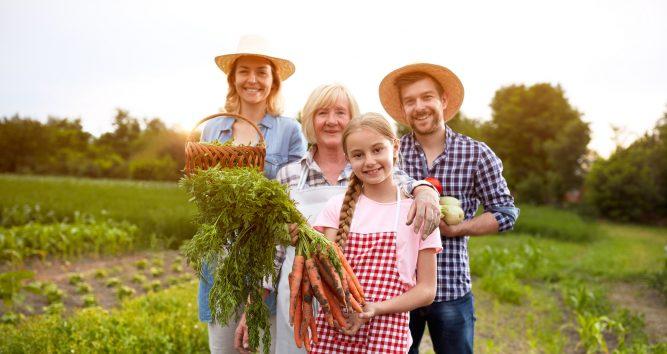 Family businesses perform better