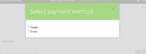 Choose one of the payment methods