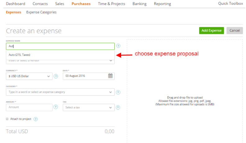 Auto-Complete-Expense-Fields2